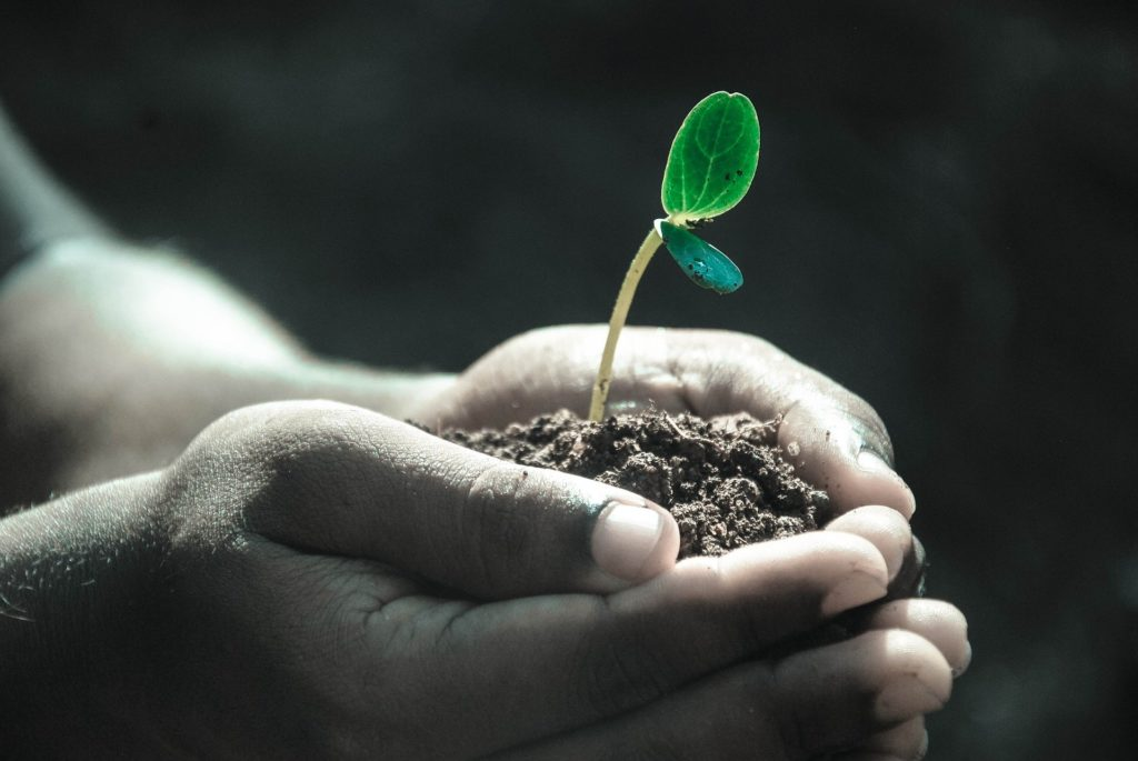 qualité du sol sanowave